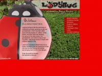 ladybug-fairies.com