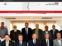 nqiegypt.org Thumbnail