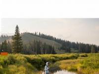tu.org