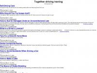 paleriderdrivingschool.com