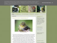 pispbirdbanding.blogspot.com