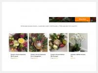 bloomsofnoosa.com.au