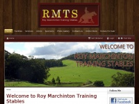 Roy Marchinton Training Stables - Western, Quarter Horse, Reining, Cutting, Training, Riding Lessons