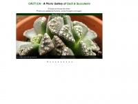 cacti.ca Thumbnail