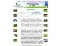calgarylawncare.ca Thumbnail