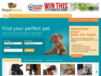 pets4homes.co.uk Thumbnail
