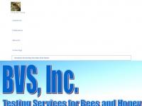 Bvs-inc.us