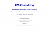 Km-consulting.us