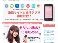 ranzcp2013.com