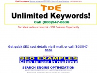 seo-searchengineoptimizers.com