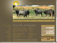 Abendsonneafrika.net