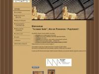 acoeurbois.net