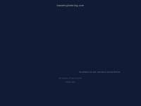 bassengineering.com