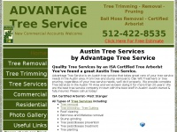 austintreeremoval.net