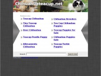 Chihuahuateacup.net