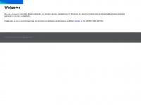 dtzconsulting.net Thumbnail