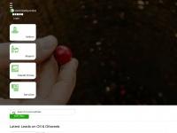 commodityonline.com