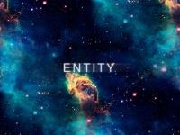 entity.net