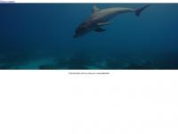 delphin-international.com