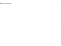 megavision.net