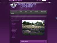 purpleridgelavender.com
