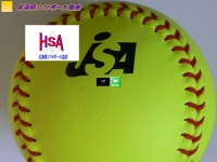 hiroshimaken-softball.net