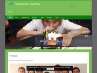 Nano-giants.net