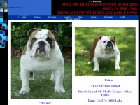 Tjsbulldogs.net
