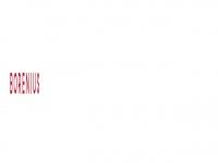 borenius.com