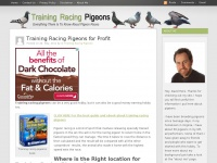 trainingracingpigeons.net
