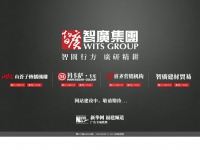 wits-group.net