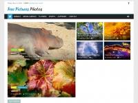 free-pictures-photos.com