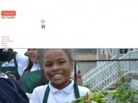 Mercycenternj.org