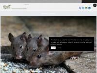gladepestcontrol.co.uk