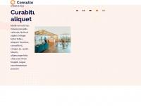 msn-sniffer.com