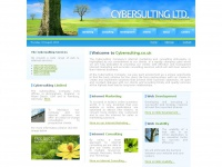 Cybersulting.co.uk