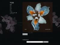 tormusic.net