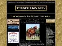 Stallion Directory for all breeds from Quarter Horses, Paints, Arabian, Thoroughbreds,Morgans,Warm bloods, Gaited and Miniature Stallions.