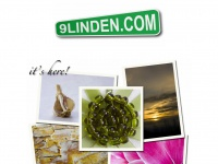 9linden.com