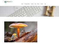 franscioniwines.com