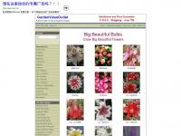 Aboutflowerbulbs.com