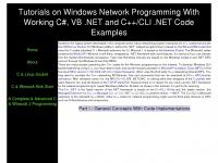 winsocketdotnetworkprogramming.com