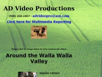 advideoproductions.com