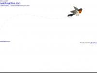 coachingclinic.com