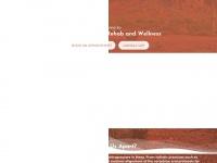amesachiropractor.com