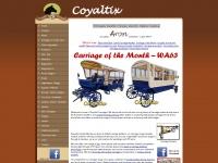 coyaltix.com