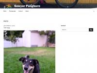 Anesti.org