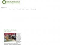 Anewamerica.org