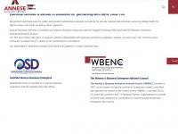 anneseelectric.com