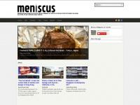 meniscuszine.com